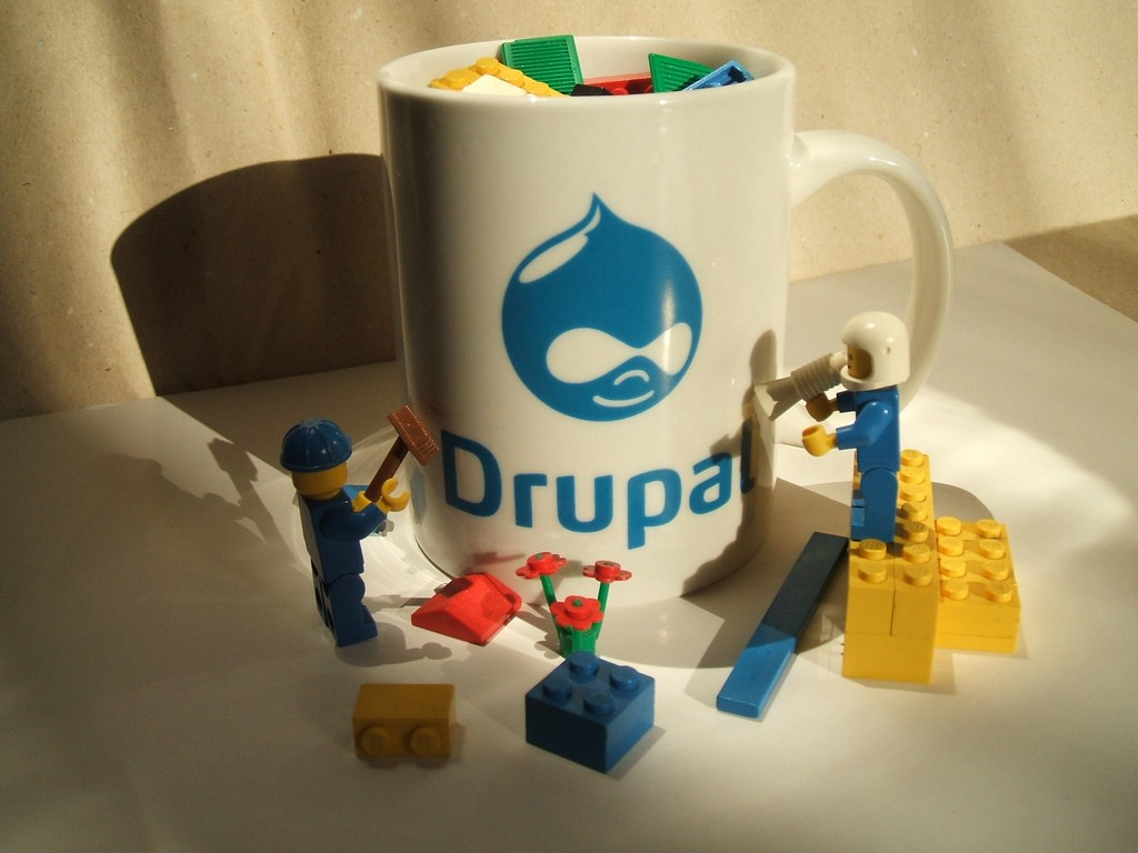 Drupal e-Commerce Services